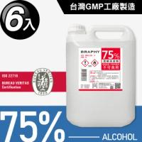 台灣GMP工廠製造75%酒精清潔液大容量4公升(6桶組)
