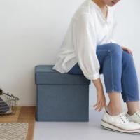 【IRIS】折疊收納椅凳 SSTR-38(摺疊/收納椅/美觀/多功能)