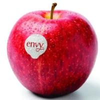 【馥果FruitGo】紐西蘭愛妃ENVY蘋果30粒/9公斤 原箱(ENVY)