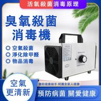 110v臭氧消毒機 臭氧發生器(家用除異味/除甲醛/活氧殺菌/空氣淨化/10g)