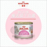 ROYAL CANIN皇家〔BC34W離乳貓主食罐,195g,奧地利製〕(單罐)