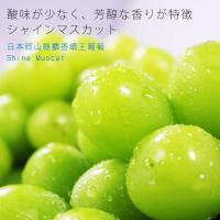 【鮮果日誌】日本岡山縣麝香晴王葡萄(一房)