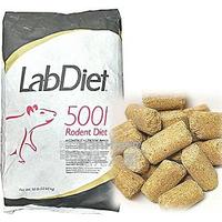 [現貨] LabDiet 5001 實驗室鼠飼料(非素食) [期限四個月以上] 倉鼠 大白 小白