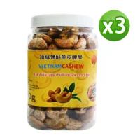 【VIETNAM CASHEW】越南頂級鹽酥帶皮腰果3罐組(480g/罐)