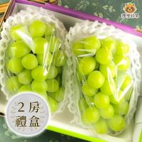 [現貨供應]日本 麝香葡萄 2房禮盒 XL(715g) 香印葡萄 長野 山梨 岡山