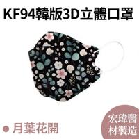 【宏瑋】各式花色KF94韓版3D立體口罩(10片/盒)