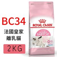 小Q狗~ROYAL CANIN法國皇家.FHN健康呵護貓系列【BC34離乳貓】2KG /幼貓飼料