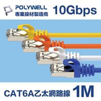 【POLYWELL】CAT6A 高速乙太網路線 S/FTP 10Gbps 1M(適合2.5G/5G/10G網卡 網路交換器 NAS伺服器)