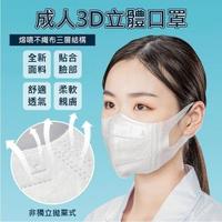 【團購世界】非醫療成人3D立體口罩100入2盒組(50入/盒裝)