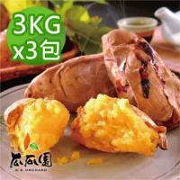 【瓜瓜園】冰烤番薯3kgx3包(台農57號地瓜)