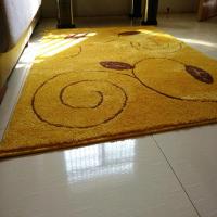 地毯/地墊!!金黃色風水客廳大地毯100*110定製入戶玄關門廳防滑腳墊進門地墊