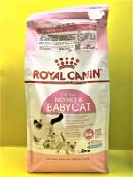 ✪四寶的店n✪附發票~法國 皇家➤BC34 離乳貓專用 4公斤/包➤2公斤 ROYAL CANIN 貓 飼料 乾糧  懷孕母貓 1-4齡幼貓