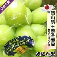 【阿成水果】日本空運岡山晴王麝香葡萄(1串/600g/盒)