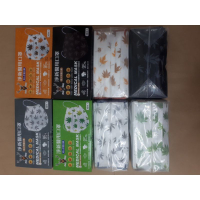 現貨👉淨新💖特殊🍁楓葉🍁高防護口罩(只有10枚無盒裝)