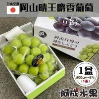 【阿成水果】日本空運岡山晴王麝香葡萄(1串/800g/盒)