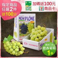 【優鮮配】日本空運超甜無籽大麝香葡萄禮盒1串(約625g/串 水果禮盒)