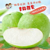 台灣福壽山蜜蘋果- 青龍蘋果 (大果)4斤裝  不必山上產地直送宅配到家在地小農的好水果
