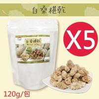 【五桔國際】土耳其白桑椹乾X5包入(120g/包)