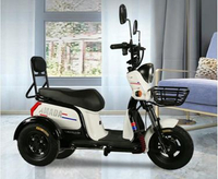 時尚女士小型家用三輪電動車成人代步接孩子三輪車不會倒翻電瓶車