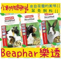 BBUY 荷蘭 Beaphar 樂透超級活力天竺鼠飼料 1kg 1公斤 2.5KG 2.5公斤 主食 犬貓寵物用品批發