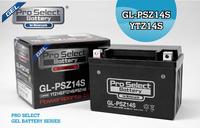 機車電瓶 PSB115  HONDA NSS300   PRO SELECT BATTERY 強力膠體電池【老虎摩配】