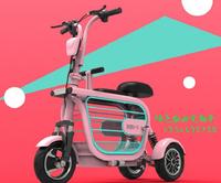DUDU-3 三輪電動車 折疊車 代步車 鋰電池 載寵物 毛小孩 鋰電池 電動自行車 電動車