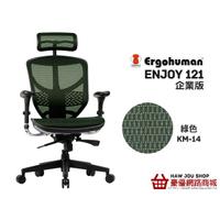 台灣之光 Enjoy121企業版人體工學椅 含組裝運費 保固1年 下標前請先確認庫存