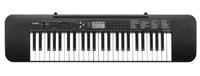 CASIO 卡西歐 CTK-240 49鍵電子琴(電鋼琴風格琴鍵,加贈超值配件及現場教學)【唐尼樂器】