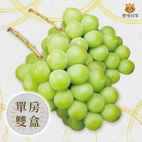 [現貨供應]雙禮盒 日本 麝香葡萄 單房禮盒 XL(715g) 香印葡萄 綠葡萄 山梨 岡山 長野