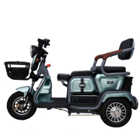 電動三輪車家用小型女士接送孩子電瓶車成人代步車電動車