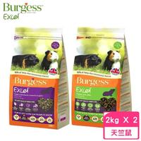 【Burgess伯爵】高機能鼠飼料《天竺鼠-薄荷鮮味|黑加侖&奧勒岡葉》2kg(2包組)