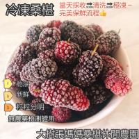 大樹張媽媽桑椹果園-桑椹冷凍果粒(免運宅配)