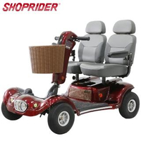 【SHOPRIDER】TE-889DXD 必翔電動代步車(雙人共乘款)
