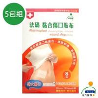 【Fe Li 飛力醫療】砝碼 黏合傷口貼布/美容膠帶(特大傷口-五包組)