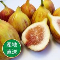 【果物配】有機轉型期新鮮無花果_1盒(600g/盒)