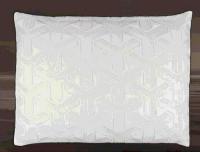 [COSCO代購] W129790 Carpenter 舒眠記憶枕 40 X 55 X 12公分