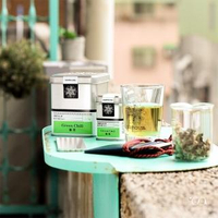 【samova 歐洲時尚茶飲】有機草本白茶/咖啡因200ppm/Green Chill 偷閒(Tea Tin Mini系列)