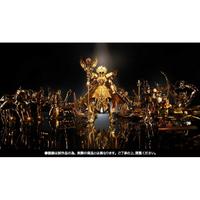 【預購】日本進口日版 BANDAI 2017 魂展會場限定 聖衣神話EX 聖鬥士星矢 黃金魂 蛇夫座 OCE 原色【星野日本玩具】