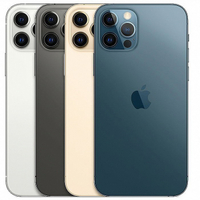 Apple iPhone 12 PRO MAX (128GB / 256GB) 台灣公司貨 新品 含稅 免運 保固