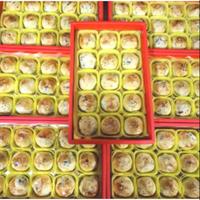 代排❤🎉彰化不二坊蛋黃酥代購 全新氣泡紙包裝(原彰化不二家)限量6入,15入