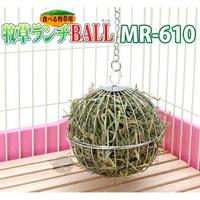 【領券滿額折50】《 日本Marukan》MR-610 兔用三用牧草球-天竺鼠兔子適用