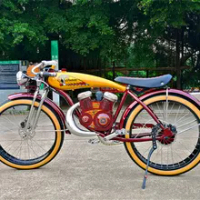 Power-Assisted Electric Bike 26inch 4.0 Wheel Electric Bike 48V 350W Motor Retro Vintage E Chopper Custom Amazing Indian Bike