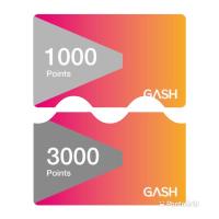 GASH POINT 3000點 1000點