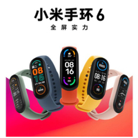小米手環6 NFC版本(非標準版) 官方全新商品【台灣發貨】【鄧1店】現貨秒出