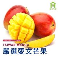 【每日宅鮮】嚴選屏東枋寮愛文芒果(15-20粒/約10斤/箱)