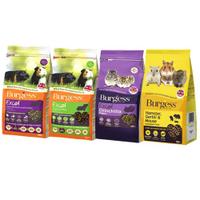 Burgess伯爵 高機能鼠飼料系列 天竺鼠/龍貓/倉鼠 自然高纖維 防止選擇性攝食『WANG』