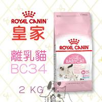 法國 皇家ROYAL CANIN  離乳貓與母貓用 (BC34) 2kg