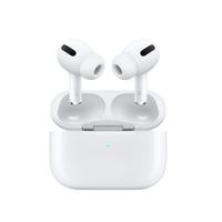 蘋果APPLE AirPods Pro 全新未拆 台灣公司貨