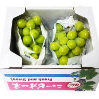 【真食材本舖 RealShop】日本頂級貓眼葡萄及麝香葡萄各1串(共2串/禮盒包裝/約1.4kg)
