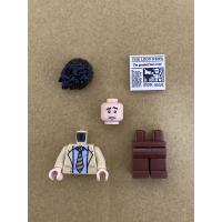 LEGO 樂高 人偶 21319 羅斯 六人行 friends IDEAS